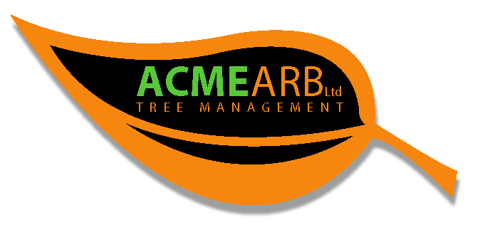 ACME ARB Ltd – Arborist and Tree Surgeon Sheffield