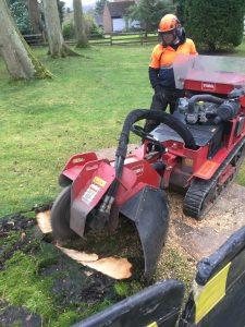 Stump Removal Sheffield